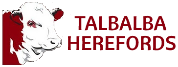 Talbalba Herefords Logo